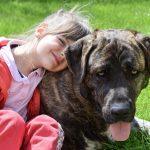 Заводить ли домашнее животное для ребенка?